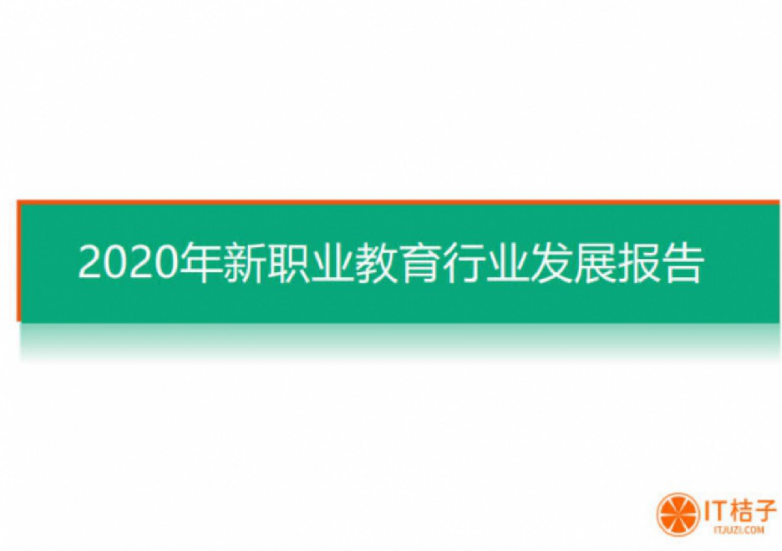 2020新职业教育行业发展报告